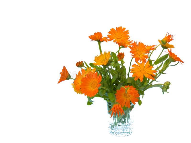 Изолированный букет цветка лета, стоковая фотография