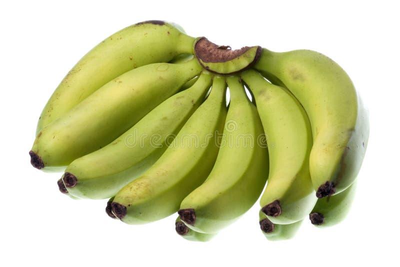 изолированный зеленый цвет бананов стоковое изображение