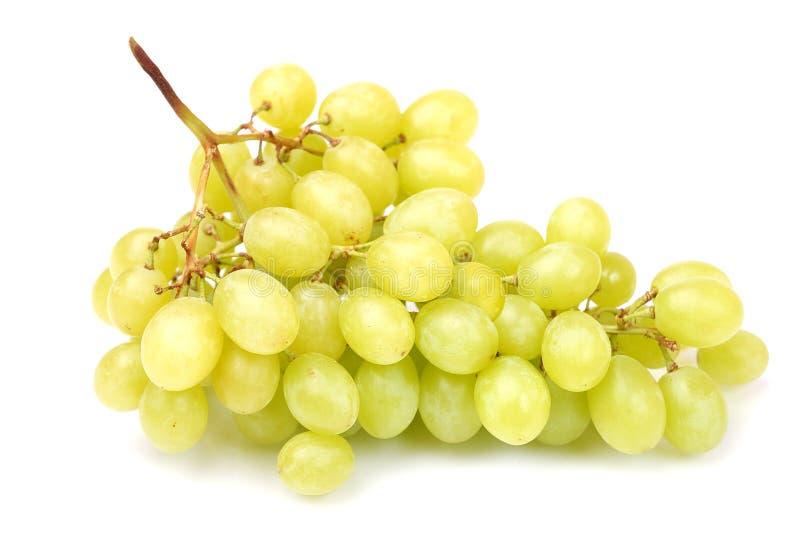 изолированный зеленый цвет виноградин пука свежий стоковое фото