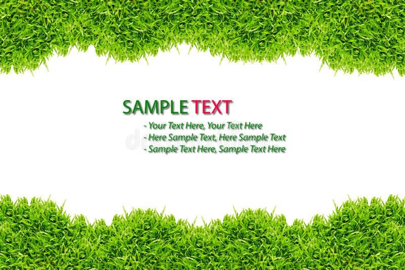 изолированный зеленый цвет травы рамки стоковые фотографии rf