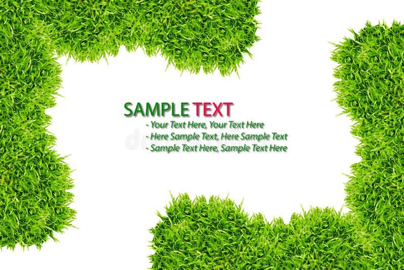 изолированный зеленый цвет травы рамки стоковое фото