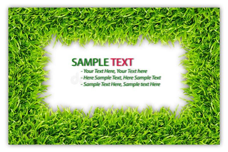изолированный зеленый цвет травы рамки иллюстрация вектора