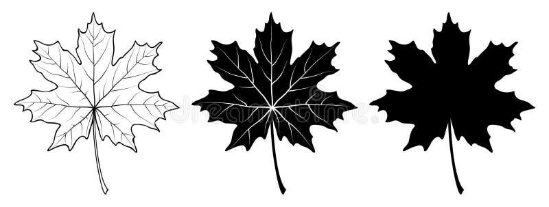 изолированный клен листьев Линейный, силуэт также вектор иллюстрации притяжки corel иллюстрация вектора
