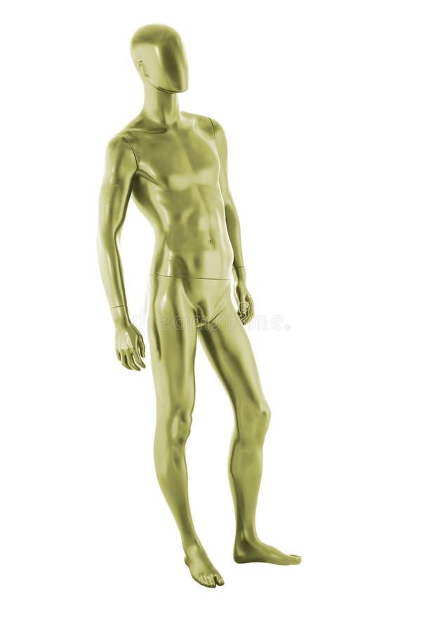 Изолированный мужчина манекена цвета лоска стоковые фотографии rf