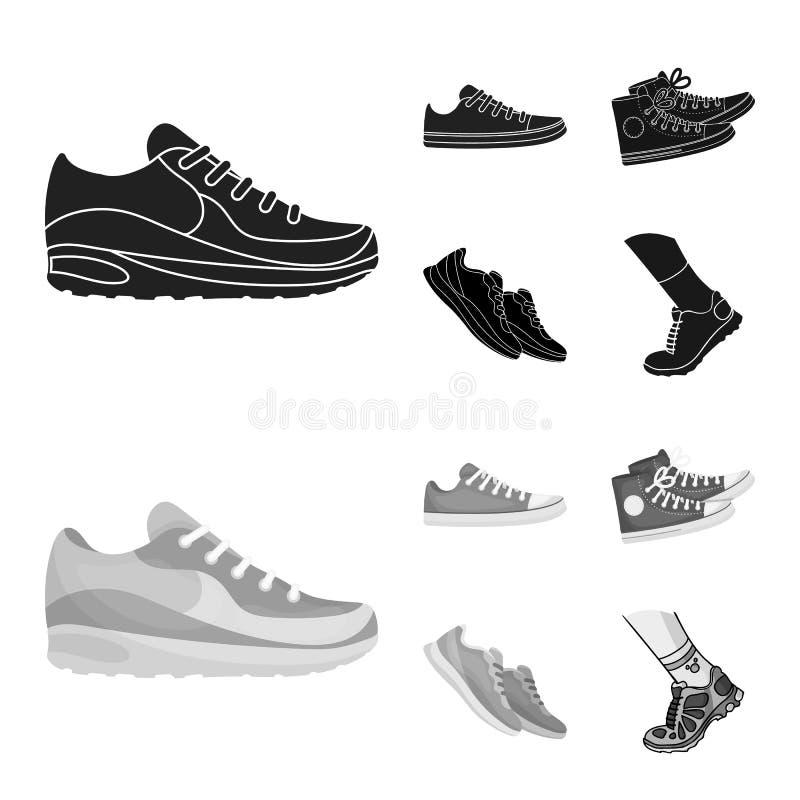 Изолированный объект ботинка и значка спорта Установите ботинка и значка вектора фитнеса для запаса иллюстрация штока