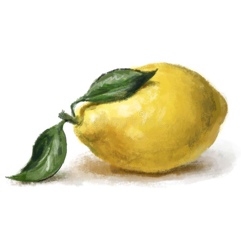 Изолированный одному лимону с листьями на белой предпосылке иллюстрация штока