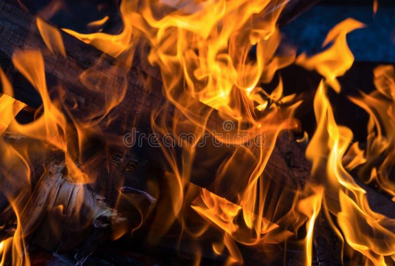 изолированный пожар предпосылки черный оранжевый журнал пламени палил конец-вверх на темной предпосылке стоковые фото