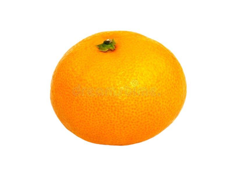 изолированный сладостный tangerine стоковое фото rf