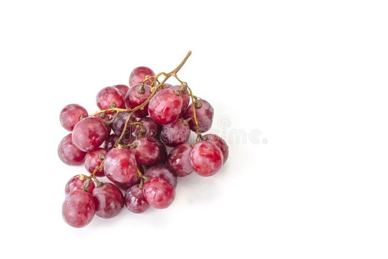 Изолированный сочный пук больших красных виноградин стоковые изображения