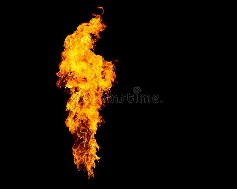 Изолированный столбец огня стоковое изображение rf