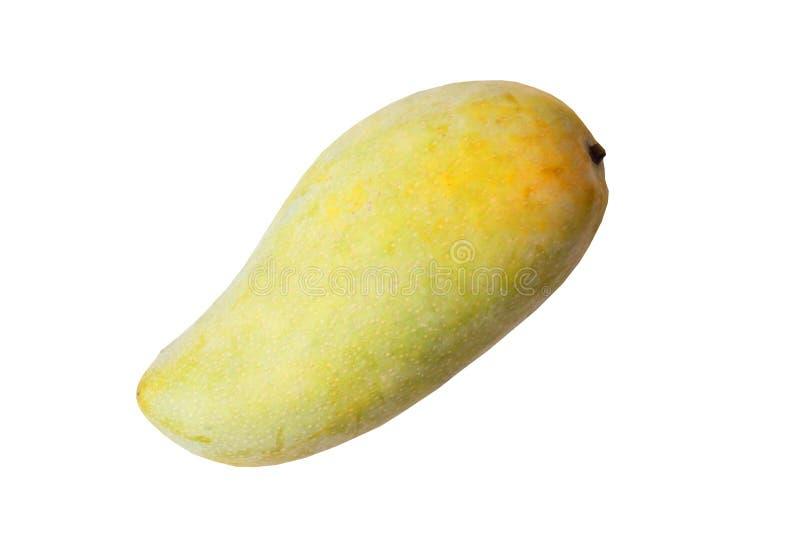 Изолированный тайского популярного плода, зрелое золотое, манго NuaungCum стоковые фотографии rf