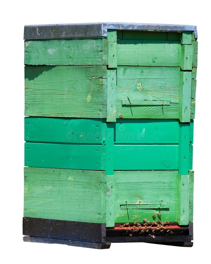 изолированный улей стоковая фотография rf