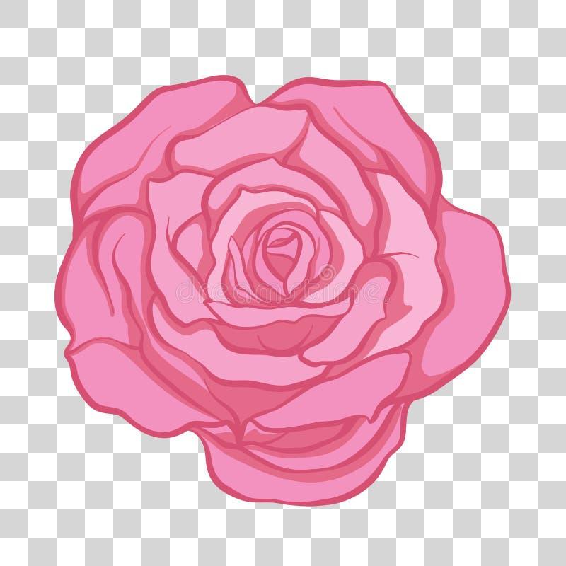 Изолированный цветок розы пинка вектор пользы штока иллюстрации конструкции ваш иллюстрация штока