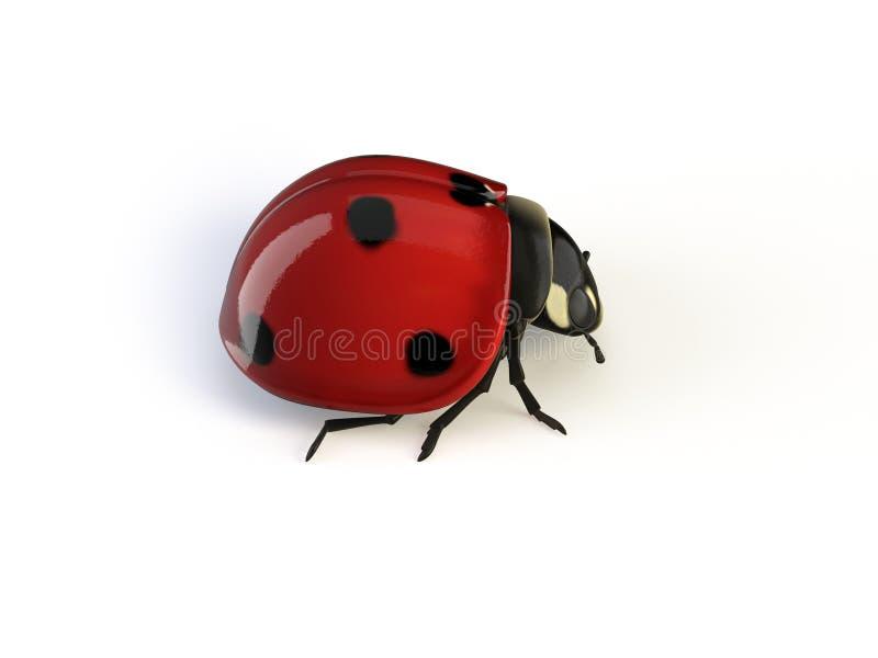 изолированный ladybird иллюстрация штока