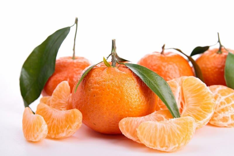 Изолированный tangerine стоковая фотография
