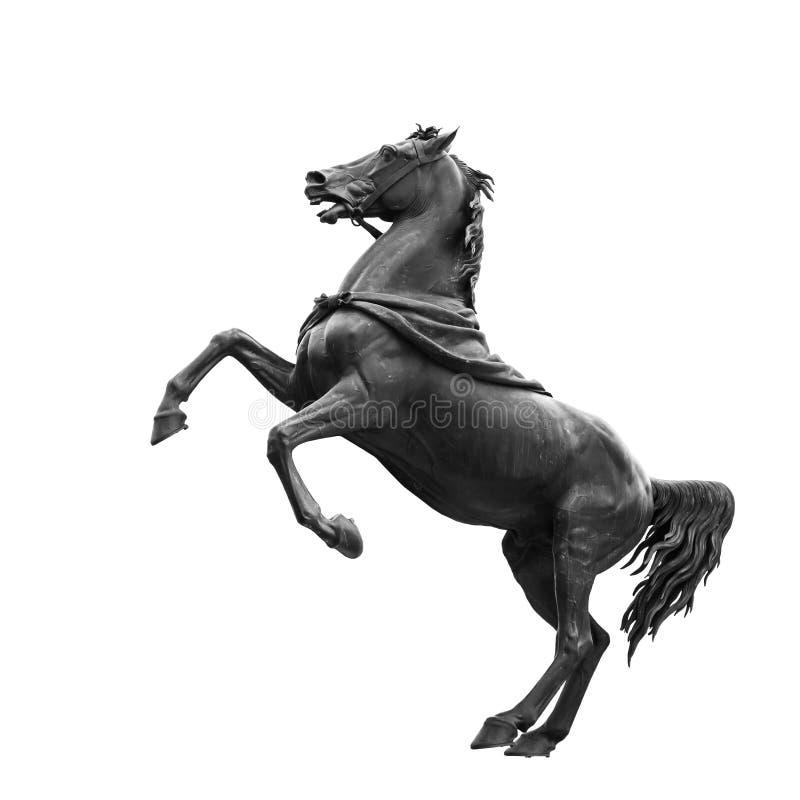 Изолировано на белой черной скульптуре лошади стоковые фото