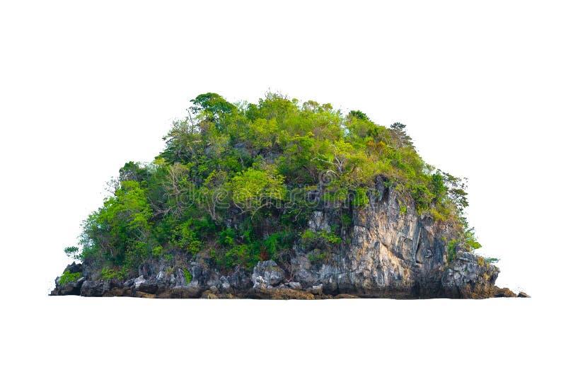 Изолируйте остров в середине предпосылки зеленого моря белой отделенной от предпосылки стоковое изображение rf