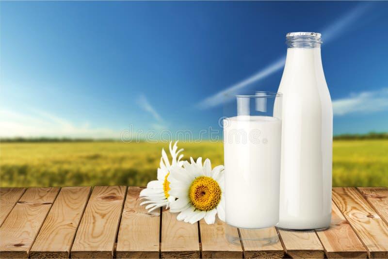изолированная бутылкой белизна молока стоковые фото