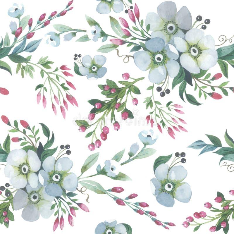 Изолированная картина цветка лилии Wildflower в стиле акварели иллюстрация штока