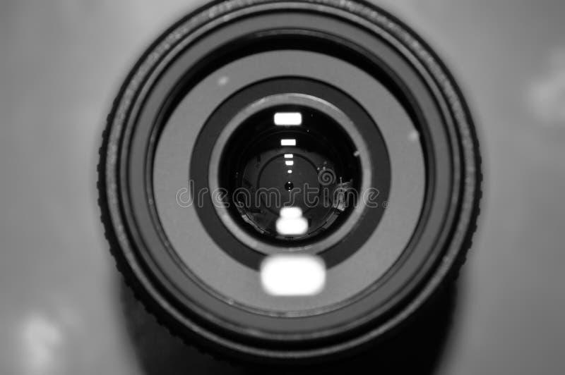 изолированная предпосылкой белизна фото объектива стоковая фотография rf