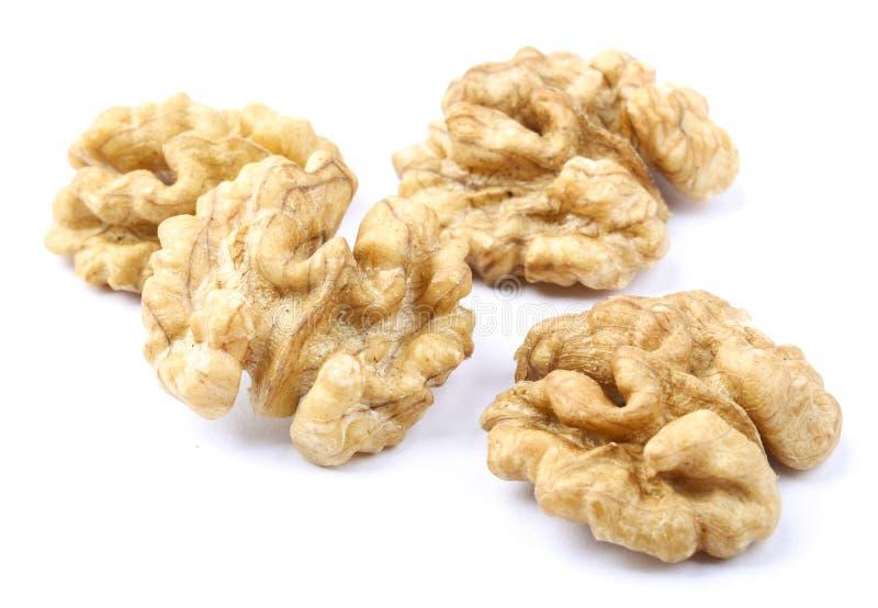 изолированные грецкие орехи белые стоковое фото rf