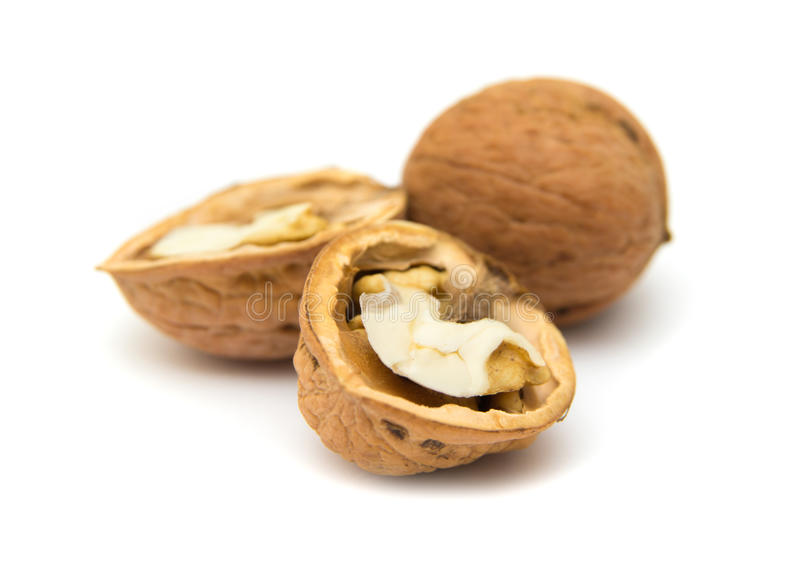 изолированные грецкие орехи стоковое изображение rf