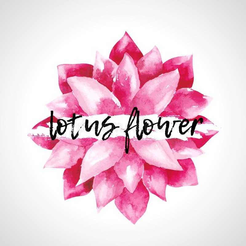Изолированные цветки лотоса акварели розовые иллюстрация штока