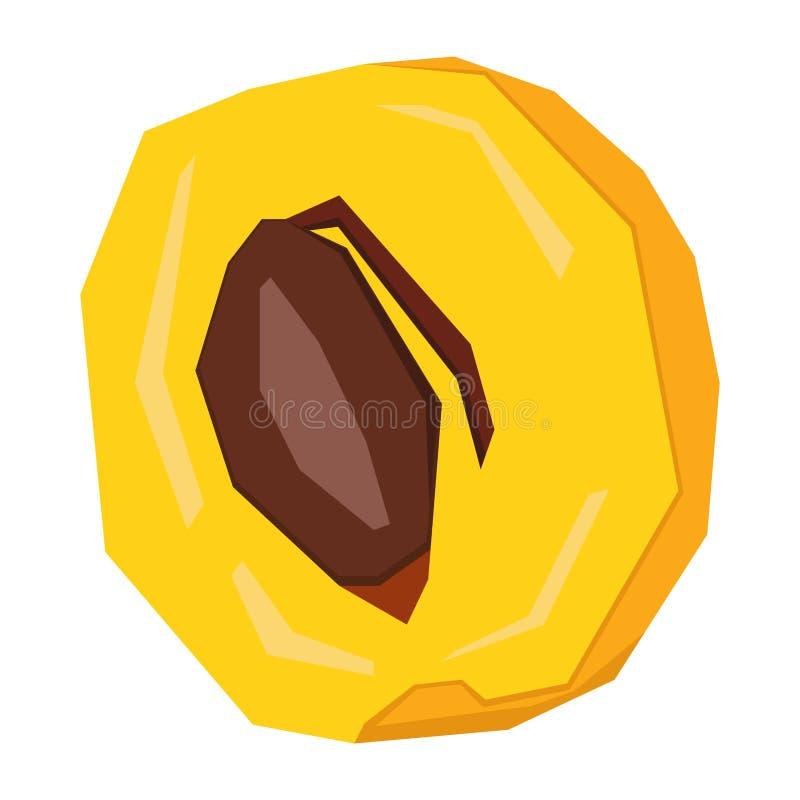 Изолированный абрикос отрезка иллюстрация штока