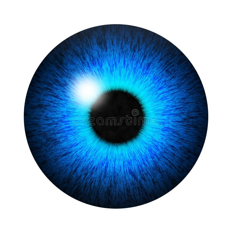 Изолированный зрачок голубого глаза иллюстрация вектора
