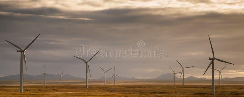 изолированный иллюстрацией ветер силы 3d стоковые фотографии rf