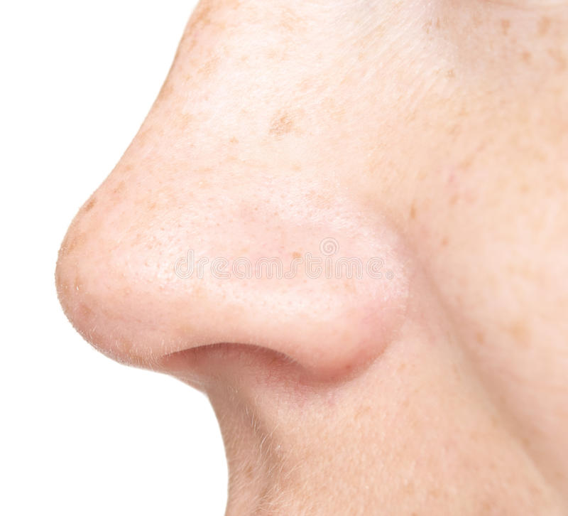 Изолированный нос женщины стоковые изображения