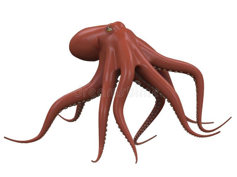Изолированный осьминог бесплатная иллюстрация