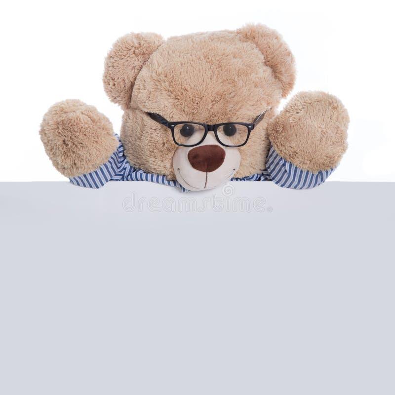 Изолированный плюшевый медвежонок проводя пустые знак или плакат для adverti стоковое фото rf
