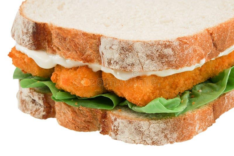 Изолированный сандвич пальца рыб стоковые фотографии rf