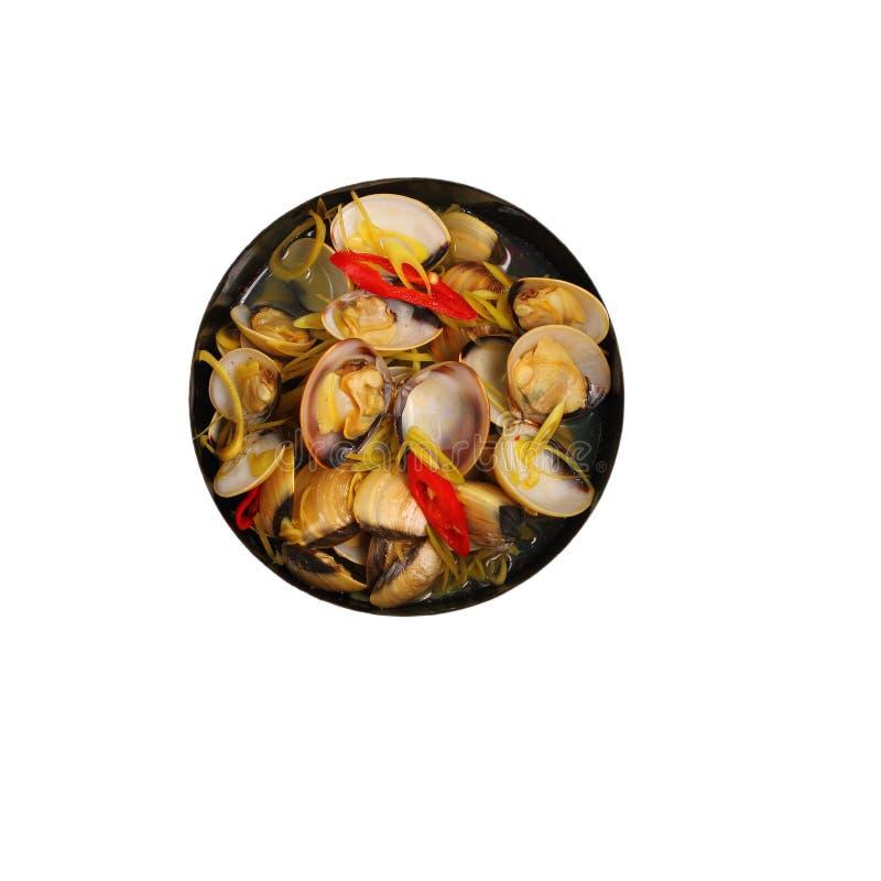 Изолированный суп clam стоковое фото