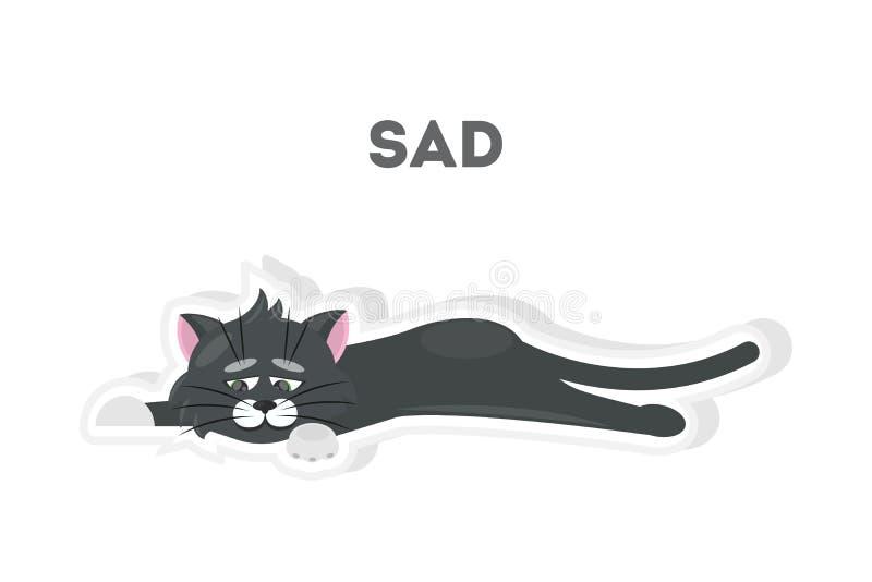Изолированный унылый кот бесплатная иллюстрация
