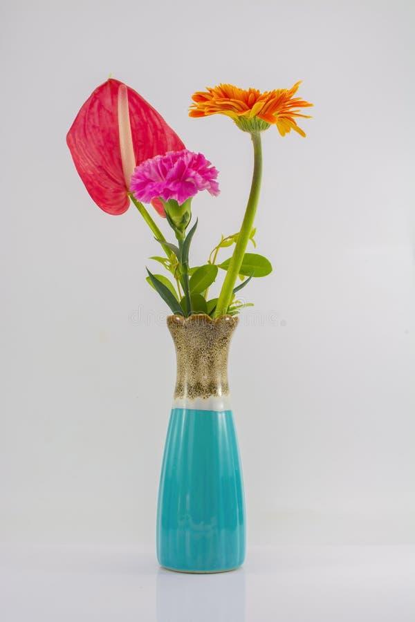 Изолят вазы и цветка на белой предпосылке стоковые фото
