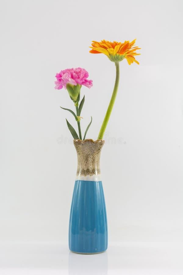 Изолят вазы и цветка на белой предпосылке стоковое изображение rf