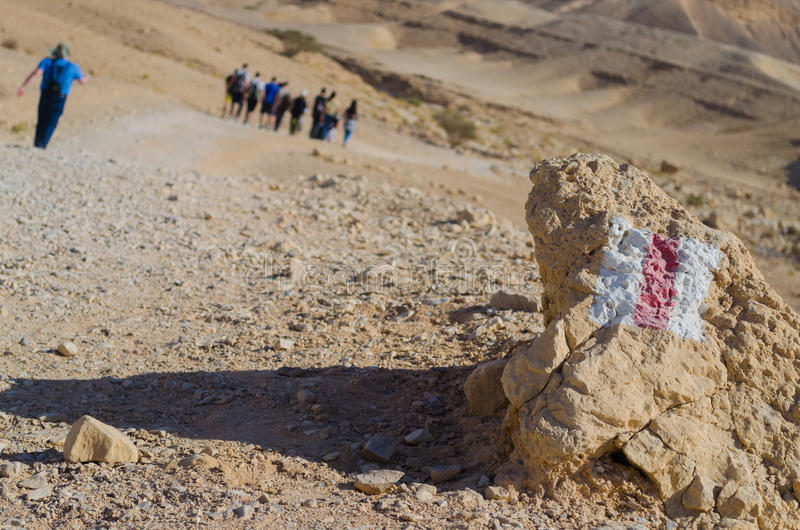 Израиль. Пустыня Negev стоковое изображение rf