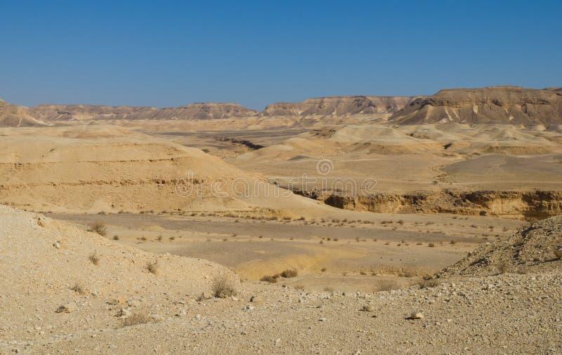 Израиль. Пустыня Negev стоковое изображение