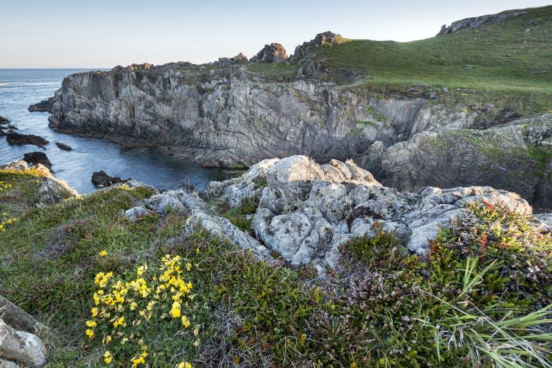 Изрезанная береговая линия в Ирландии стоковая фотография