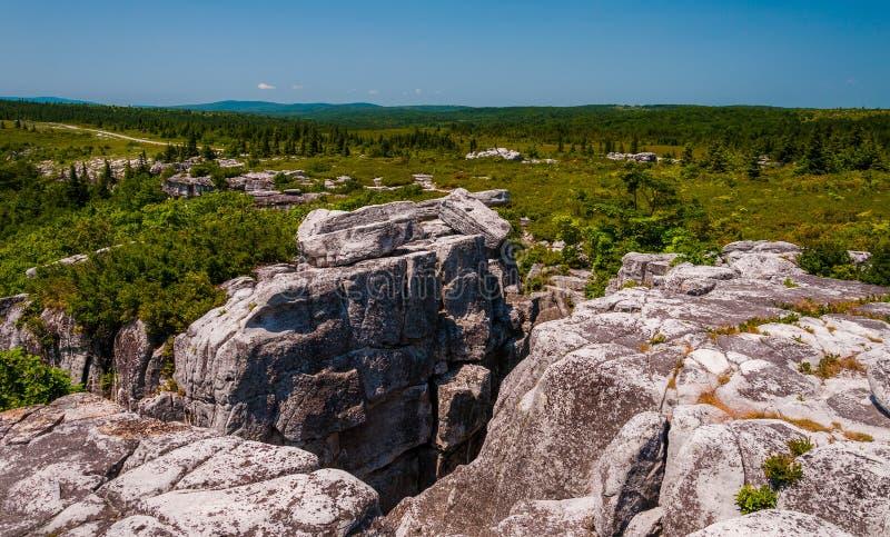 Изрезанная, скалистая местность медведя трясет, в глуши дернов тележки, WV стоковые изображения rf