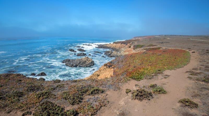 Изрезанная центральная береговая линия Калифорнии на Cambria Калифорнии США стоковые фотографии rf