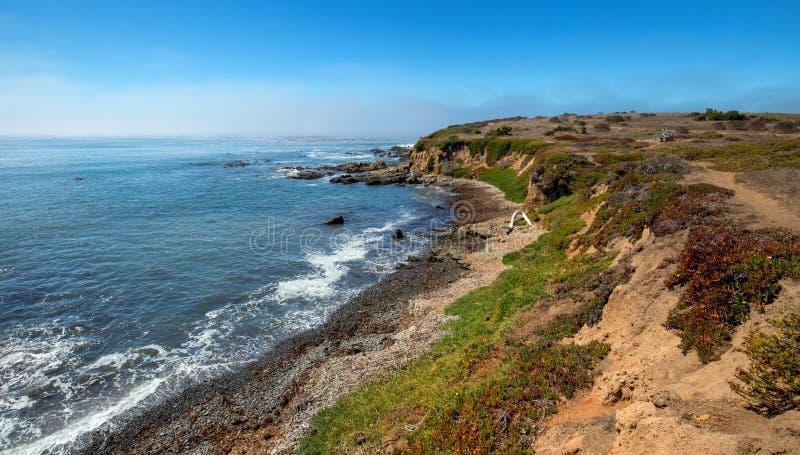 Изрезанная центральная береговая линия Калифорнии на Cambria Калифорнии США стоковое фото rf