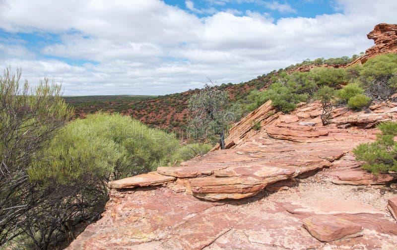 Изрезанный ландшафт Kalbarri: Западная Австралия стоковые фотографии rf
