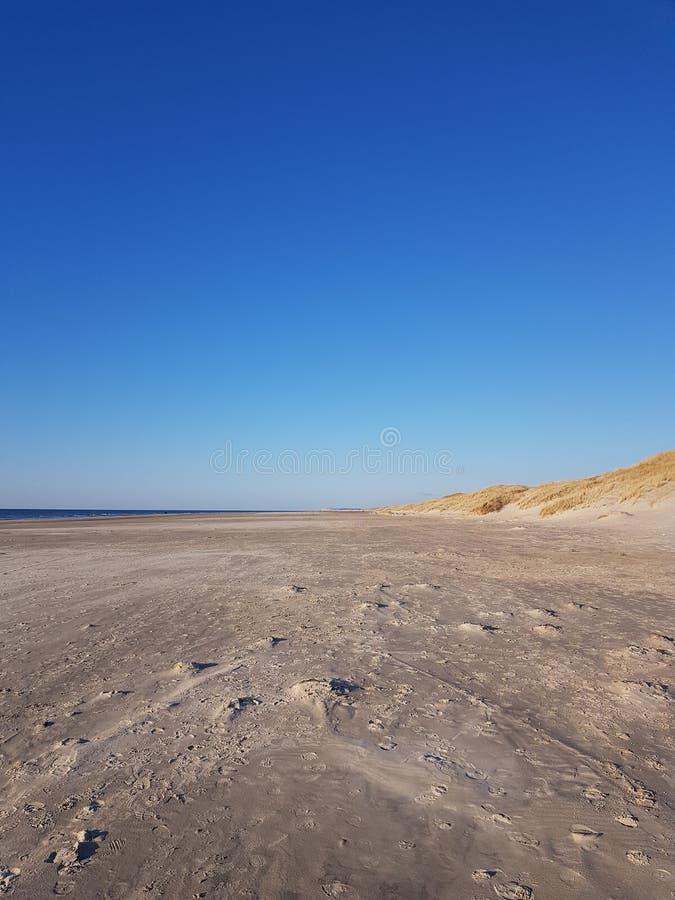 Изумительное голубое небо на пляже стоковое фото