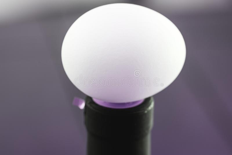 Изумительное изображение яичек в белом взгляде цвета и макроса близком поднимающем вверх бесплатная иллюстрация