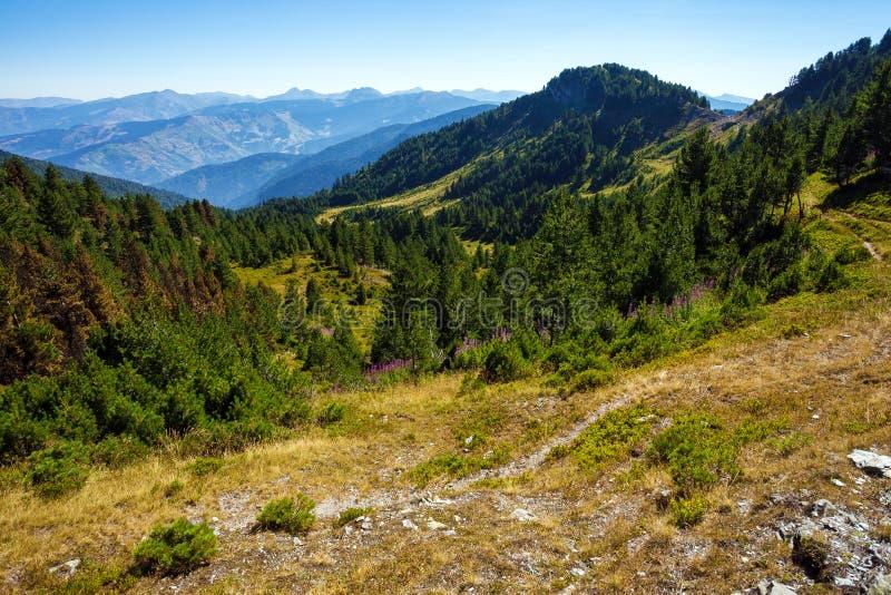 Изумительные горы в Черногории стоковые изображения