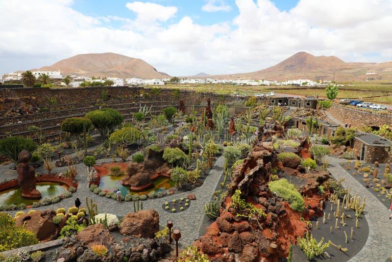 Изумительный взгляд на тропическом саде Jardin de Кактусе кактуса в деревне Guatiza, Лансароте, Канарских островах стоковое фото rf