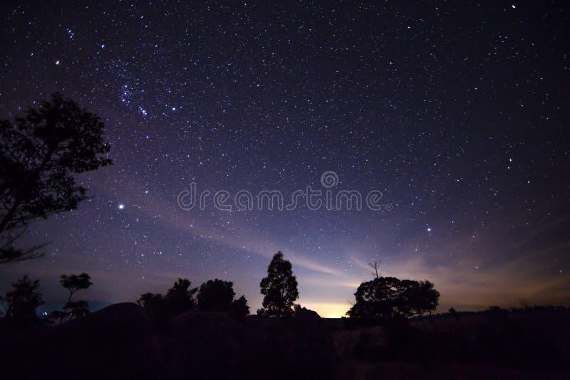 Изумительный взгляд ночи с звездами стоковая фотография rf